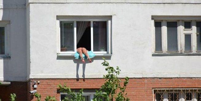 russa apanha sol